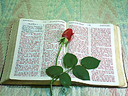 King_james_bible1