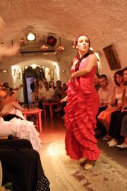 Flamenco_082