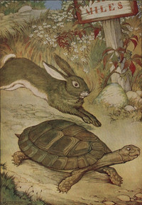 The_tortoise_and_the_hare__project_