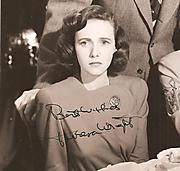 Teresawrightnew