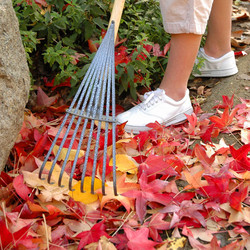 Shrub_rake_lt8_action_960