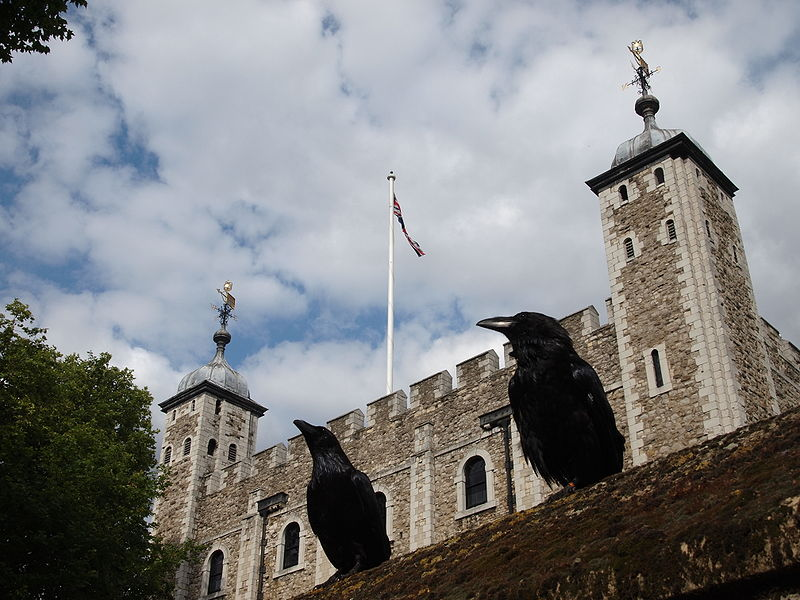 Two_ravens_and_the_tower_of_london