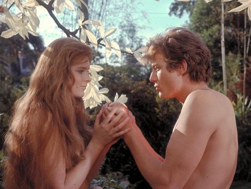 漢字 5年の漢字 : Adam and Eve Bible Movie